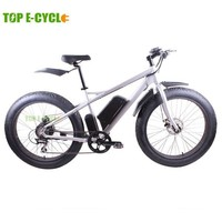 TOP E-cycle 2015 cool big trie snow fat e bike,beach cruiser electric bike china