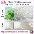 la decoración del hogar decorativos de pvc de la ventana de vidrio de protección solar de la película
