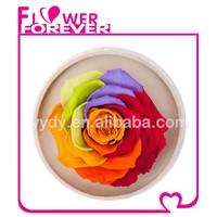 Handmade Wholesale Preserved Flower