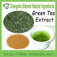 Factory direct sale Green tea extract 100% Natural organic bio green tea extract
