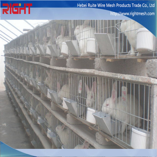 Cheap welded wire mesh rabbit cage used buy rabbit cage for Cheap c c cages