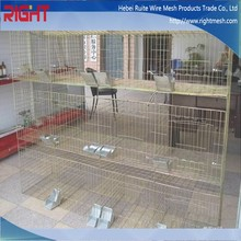 China manufacture suppling 4x4 Welded Wire mesh For Rabbit Cage ( Direct Factory Sales)