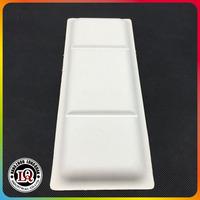 Rectangle Disposable Bagasse Sugarcane Plate