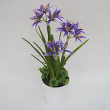 Popular Plastic Artificial Daffodil Flowers
