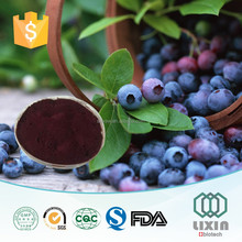 100% natural and organic blueberry extract,fruit powder,Anthocyanidins 5%-25%
