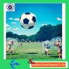 bumper ball inflatable ball bubble ball for football with good quality best price for sale
