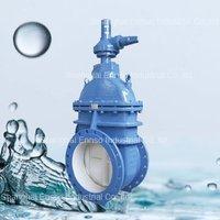 High Quality DN50-DN1600 gate valve long stem