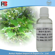 Highest Grade Herbal Eucalyptus oil 80% camphor