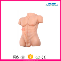 lifelike male half-body powerful chest sexy muscle sex doll with adamant penis sex doll for woman
