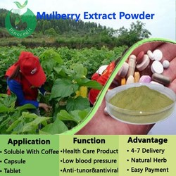 Mulberries Fruit Extract/Mulberry Leaf Extract/Paper Mulberry Extract