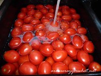 Big Round Fresh Tomatoes