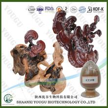 Ling Zhi P.E. / Ling Zhi Powder Extract / Ling Zhi Powder