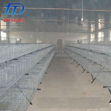 Hot selling laboratory animal cage with low price
