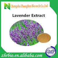 Factory supply Natural Lavender extract 5:1