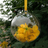 2015 Clear plastic Christmas balls hanging photo baubles wholesale