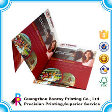 Printing Custom Full Color Nice File Folder Mechanism with Logo