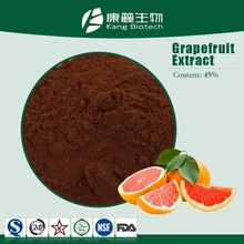 100% Natural Powder Grapefruit Seed Extract with Low Price