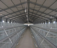 POUL TECH new frame meat chicken equipment layer egg chicken cage/poultry farm house design