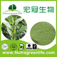 Organic Matcha green tea powder, Free Simple at favorable factory price