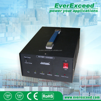 EverExceed CHF esay battery connection portable car battery charger
