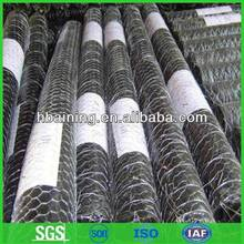 PVC coated Hexagonal wire mesh for feeding chicken (ISO 9001)