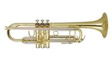 Wisemann DTR-250 standard/student model Bb Trumpet