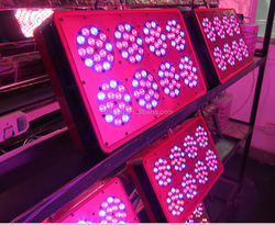 flowering and fruiting crops led grow light full spectrum, 300w led grow light, cidly led grow light