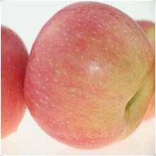chinese red fuji apple