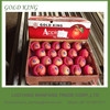 "Apple Fruit Bulk Fresh Fruit Apple Brand""GOLD KING"""