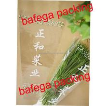 V shape fresh vegetable/flower plastic packaging bag