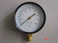 OEM Plastic/Metal/Stainless Water Pump Pressure Gauge