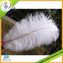 Hot sale wholesale white feather decorations