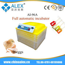 Fully automatic fertilized ostrich eggs for sale full-automatic incubator incubator for babies