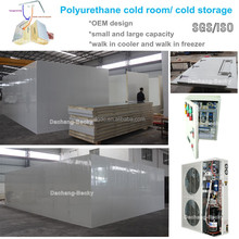 Copeland condensing unit cold room cold storage by polyurethane panels