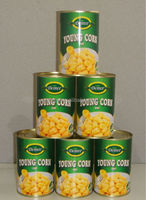 Canned Corn Specification Corn Factory All Types of Vegetables