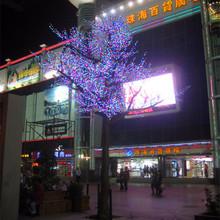 Colorful led light wholesale moringa tree leaf powder suppliers