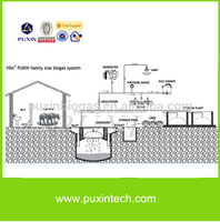 PUXIN 10m3 biogas tank plant to generate electricity from waste
