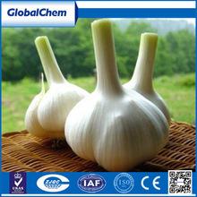 Wholesale China feed grade garlicin treat e.coli salmonella sp