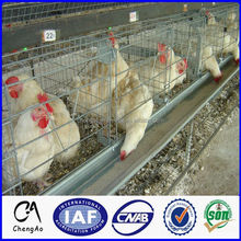 Alibaba days old small chicken breeding chicken cage system for layers and broilers