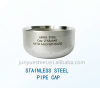 Supplier of Stainless Steel Pipe Fitting Hats & Caps