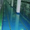 Caboli epoxy dryveway coating for concrete floor paint