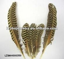 Peacock Mottled Wing Rounds LZBMH000350