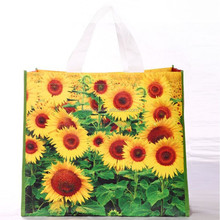 2015 New style Custom Printing Laminated on PP Woven Shopping Bag
