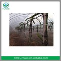 de áfrica mejor calidad de riego agrícolas de riego equipos de riego por aspersión