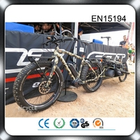 EN 15194 CE approval bafang motor beach cruiser electric bicycle retrofit kit
