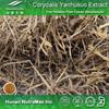 Corydalis Extract Powder Tetrahydropalmatine 80%90% CAS NO. : 2934-97-6