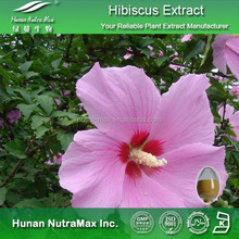 Hibiscus puro extrato extrato da flor do Hibiscus Hibiscus P E.4 : 1 ~ 20:1