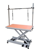 2016 Newest Design Electric grooming table for dogs ET-1A