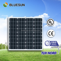 Bluesun high quality best price street lamp system use mono solar panels 55w