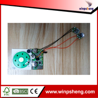 cob voice recording chip for music notebook